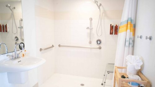 ADA bathroom shower with handle rails